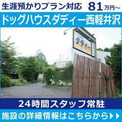ドッグハウスダディ西軽井沢バナー