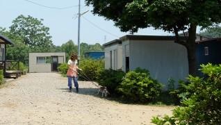老犬ホーム花園牧場 散歩風景