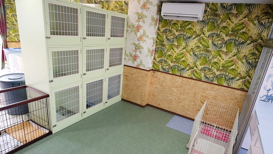 老犬ホーム鹿児島 ワンちゃんのお部屋