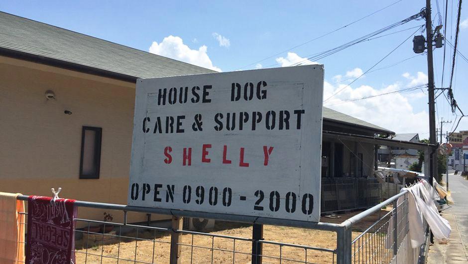 老犬ホームシェリー 看板