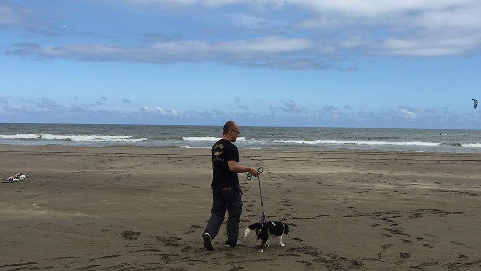 老犬ホームながらELLE 散歩風景