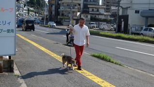 介護付老犬・老猫ホーム おりづる園散歩風景