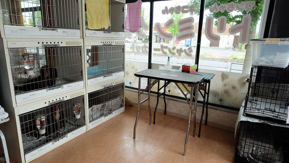 コビー動物病院老犬・老猫ホームのトリミングルーム