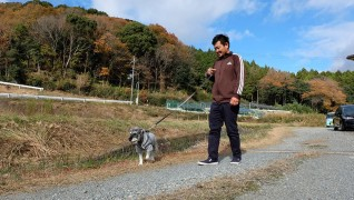 老犬ホームJiJi散歩風景