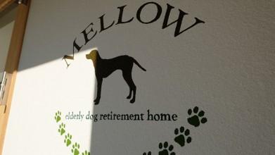 老犬介護ホームメロー 入口看板