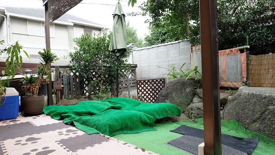老犬ホームポエム お庭