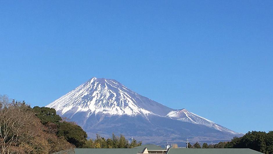 老犬ホームだいあーど富士店 富士山の景色
