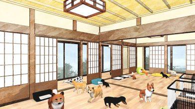 老犬ホームリリモナハウス_施設内イメージ