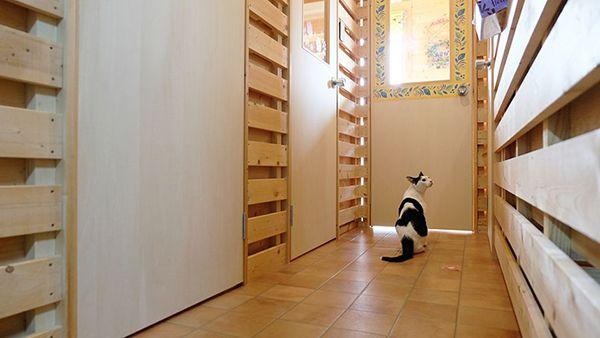 猫専門長期預かり くうの家_外観