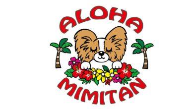 老犬ホーム ALOHA MIMITAN ロゴ