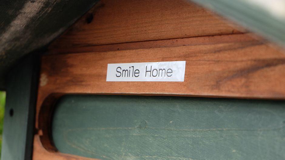 家庭的老犬介護施設_Smilehome(スマイルホーム)_看板
