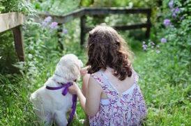 老犬と子供