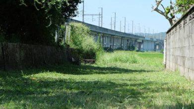 老犬ホーム・KOMUGI_周辺風景