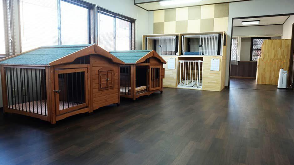 Doggy's Home(ドギーズホーム)_施設内間