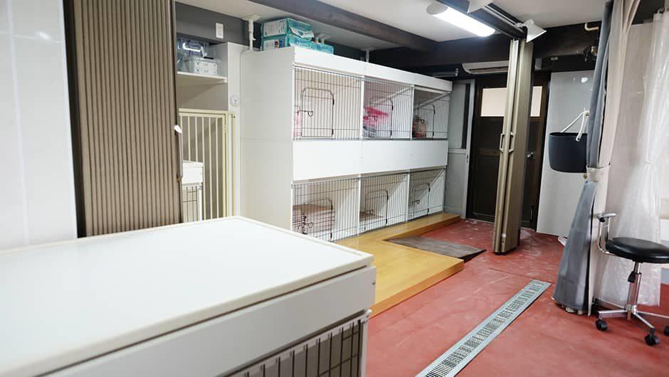 人と犬の共生アポレ_高齢犬のお部屋